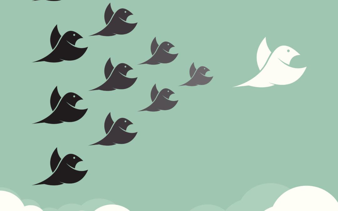 Social Media: Top 5 to Follow in 2015